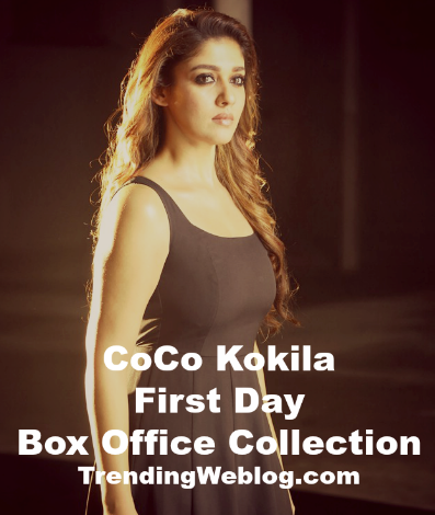 CoCo Kokila Telugu Movie First Day Friday Box Office Collection