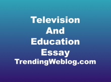 Television is very useful tool when it comes to education