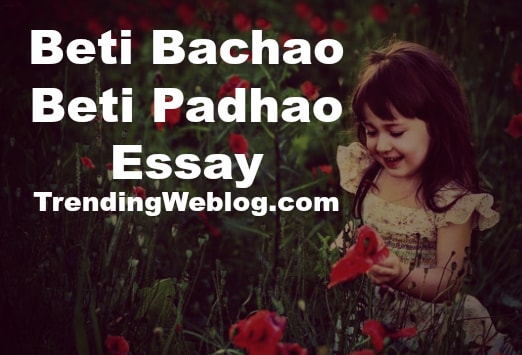 Persuasive Essays Examples For High School  Example Of English Essay also High School Dropout Essay Beti Bachao Beti Padhao Essay In English For Students  Essay Papers Examples