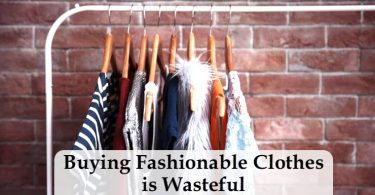 buying fashionable clothes is wasteful IELTS essay