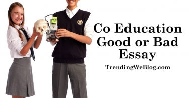 Co Education is Good or Bad Essay