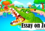 Essay on Zoo