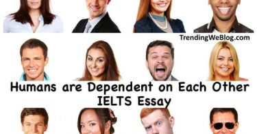 Humans are dependent on each other IELTS Essay